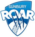 Roar logo2